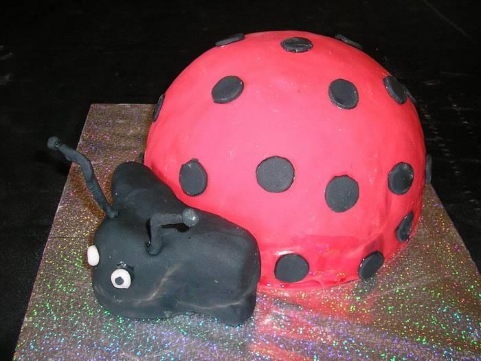 עוגה ליום הולדת חיפושית