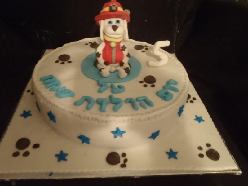 עוגה ליום הולדת מפוסלת מפרץ ההרפתקאות בנים
