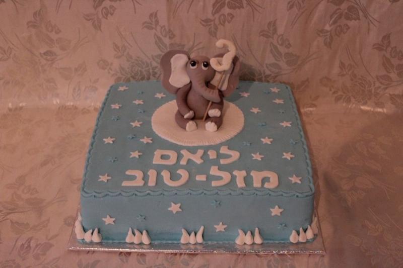 עוגה ליום הולדת פיל מפוסל